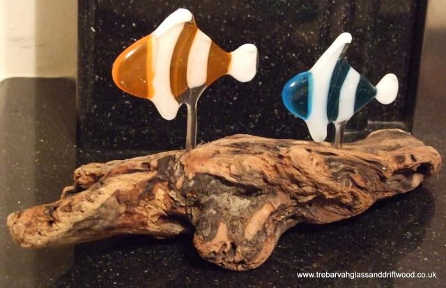 fused_glass_fish_in_driftwood.jpg